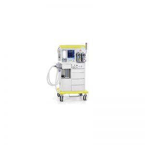leon-800x800px